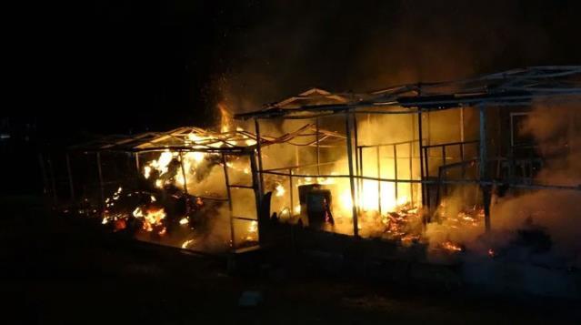 Bursa'da at çiftliğinde yangın: 10 at telef oldu…